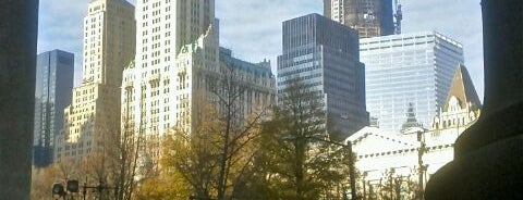Woolworth Building is one of New York for the 1st time !.