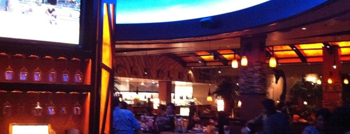 Elephant Bar is one of Restaurants at Bay Street.