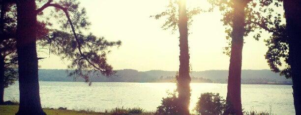 Lake Guntersville is one of Places I like.