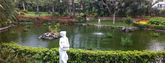 The Oriental Spa Garden - Hotel Botánico is one of Tenerife.
