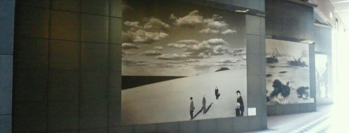 Tokyo Photographic Art Museum is one of Japan must-dos!.