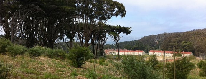 Presidio of San Francisco is one of A Dog's San Francisco.