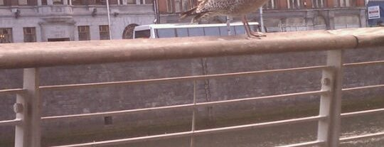Millennium Bridge is one of Dublin Tourist Guide.