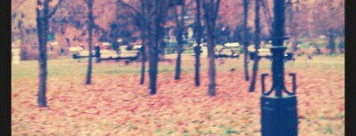 Екатерининский парк is one of Лучшие парки Мск.