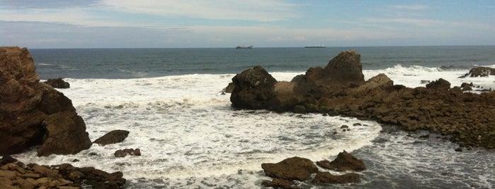 Playa de El Cuerno is one of Guide to Avilés's best spots.