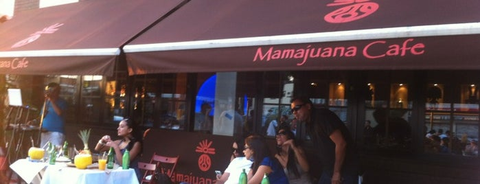 Mamajuana Cafe Queens is one of Favorite Restaurant in NYC PT.2.