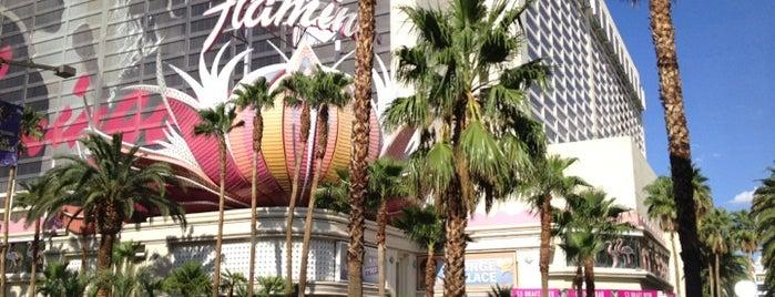 Flamingo Las Vegas Hotel & Casino is one of Viva Las Vegas.