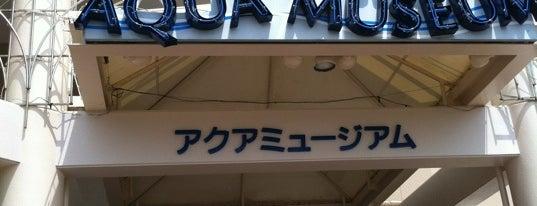 アクアミュージアム is one of Yokohama.