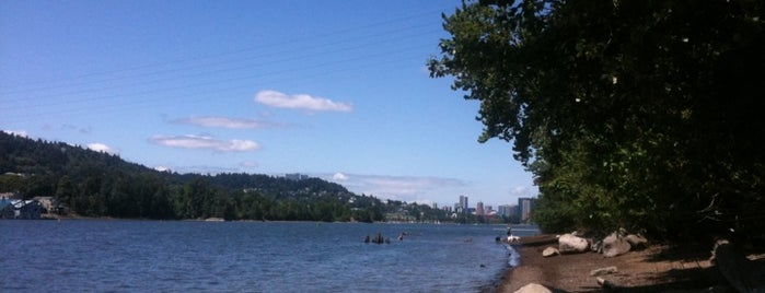 Sellwood Park is one of The 15 Best Dog Runs in Portland.