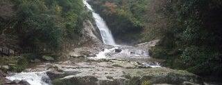 Kannon Falls is one of 日本の滝百選.