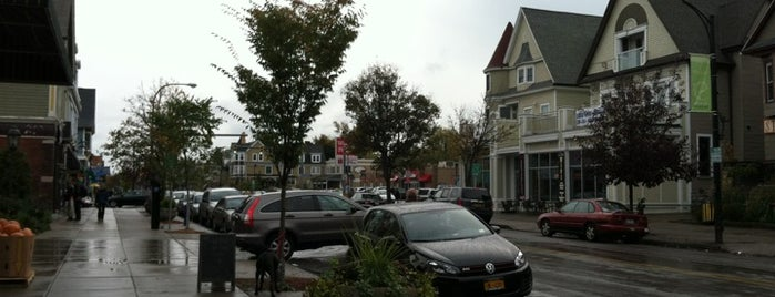 Elmwood Village is one of Must see places in Buffalo for tourists #visitUS.