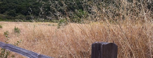 Garland Ranch Regional Park is one of Dog-Friendly Monterey Peninsula.