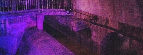 The Third Man Sewer Tour is one of 36 hours in...Vienna.