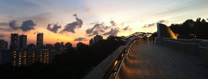 Henderson Waves is one of Singapore's Popular Places.
