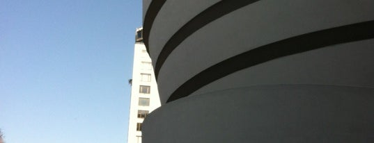 Solomon R Guggenheim Museum is one of Diana.