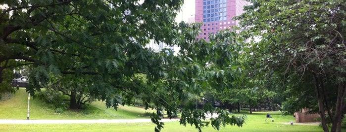 Must-visit Parks & Outdoors in Frankfurt