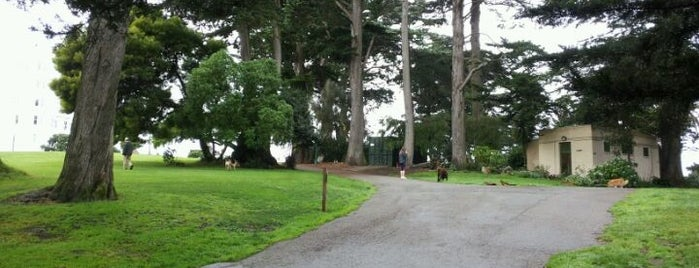 Alamo Square Dog Park is one of Dog Friendly SF.