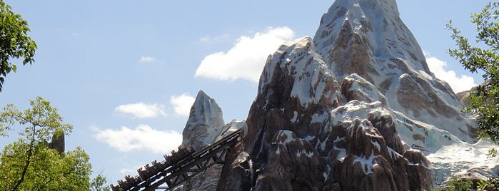 Expedition Everest is one of Disney World!.