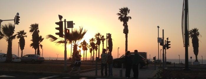 Aviv Beach is one of We Love Tel Aviv!  #4sqCities.