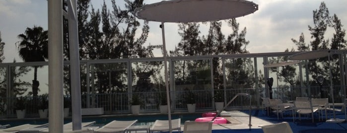 Pool at The Standard, Hollywood is one of LA and beach cities as a local.