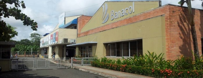 C.I Banacol S.A is one of Empresas Colombia.