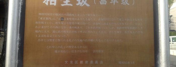 昌平坂 is one of 坂道.