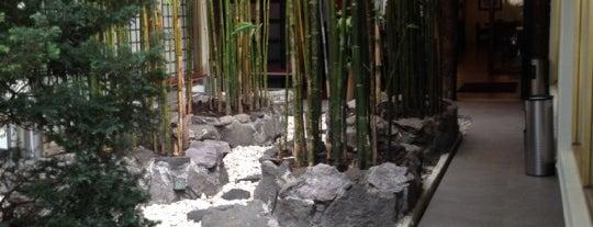 Samurai Restaurante is one of ASIATICA.