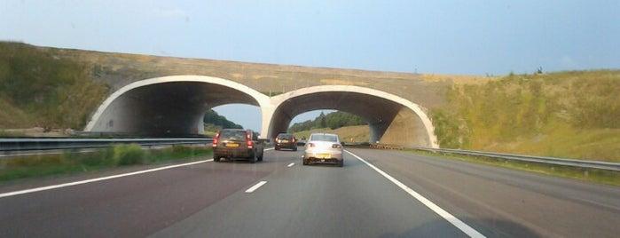 Ecoduct Hoog Buurlo is one of Bridges in the Netherlands.
