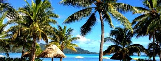 Four Seasons Resort Bora Bora is one of Must doooo.