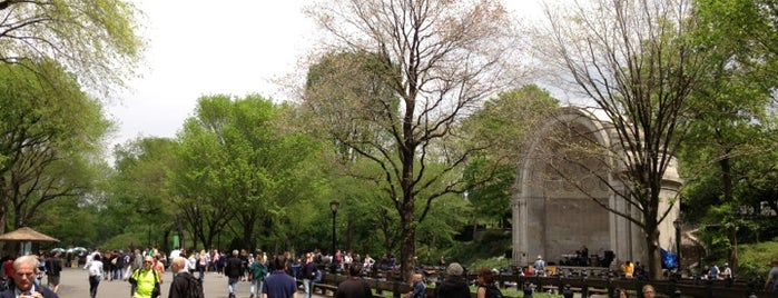 The Central Park Mall is one of 101 places to see in Manhattan before you die.