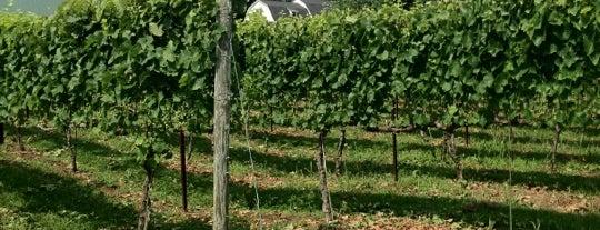Harford Vineyard & Winery is one of Wineries.