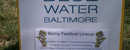Blue Water Baltimore is one of December bucket list.