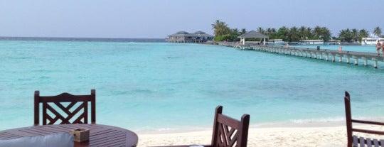 Vani Coffee Shop is one of เที่ยวพักร้อนที่ Maldives.