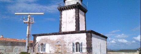 Capo Pertusato is one of Corsica.