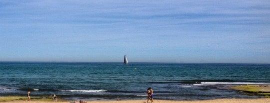 Playa de La Mata is one of Gente buena y buena gente.