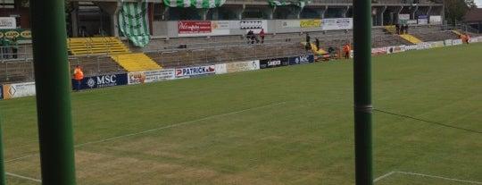 Stade Robert Urbain is one of Jupiler Pro League and Belgacom League - 2013-2014.