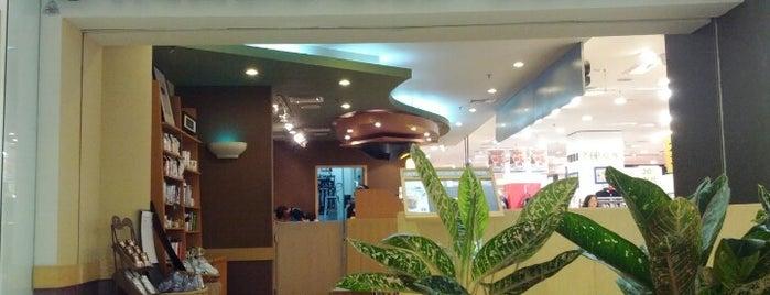 Starbucks is one of Jakarta. Indonesia.
