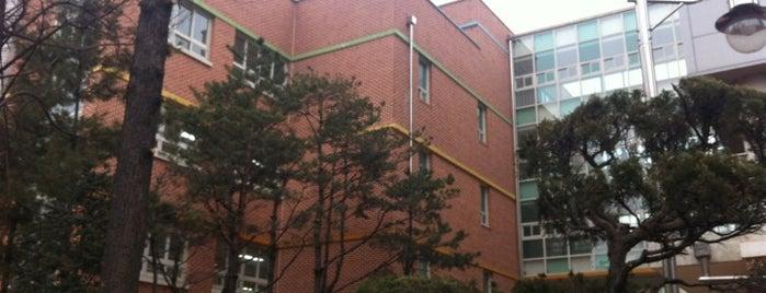 신석초등학교 is one of 마포구.