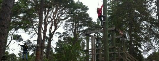 Landmark Forest Adventure Park is one of GreaterSpeyside.