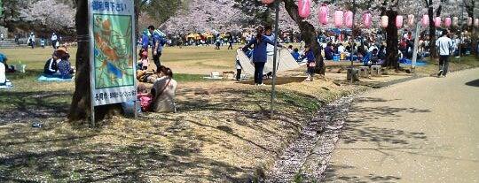 Yukyuzan Park is one of 日本の都市公園100選.