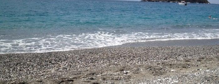 Isola di Cirella is one of Calabria: la costa tirrenica.