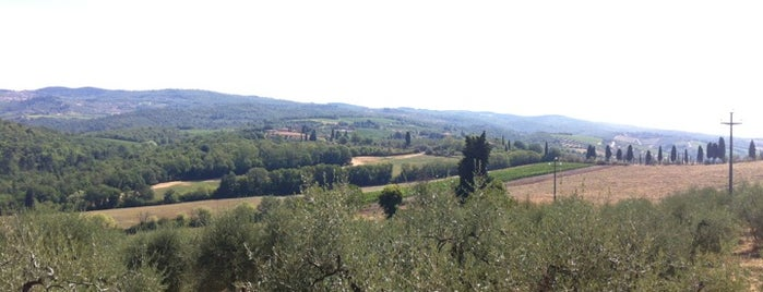 Tenuta di Lilliano is one of Chianti Classico Producers.