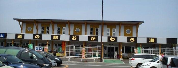 道の駅 おがわら湖 湖遊館 is one of whatwhat_i_do.