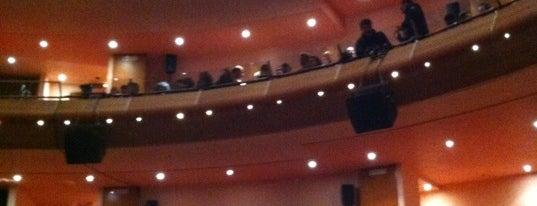 Teatro Nuovo Giovanni Da Udine is one of I miei luoghi.