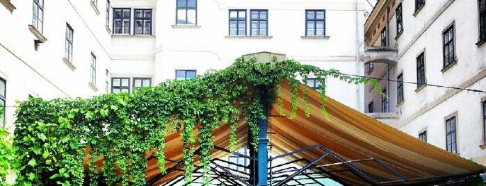 Haas & Haas Teehaus is one of Food & Fun - Vienna, Graz & Salzburg.