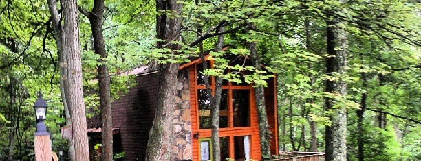 Bearadise Ober Ski Mountain Rental Cabin by Cabin Fever Vacations is one of Home Theater Cabins in the Smokies.