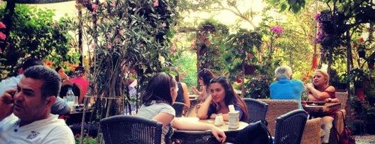 Cafe Botanica is one of Gurme Ankara.