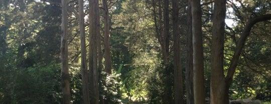Bartlett Arboretum is one of Best of Stamford, CT! #visitUS.