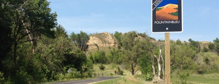 Loess Hills State Forest is one of Iowa: State and National Parks.