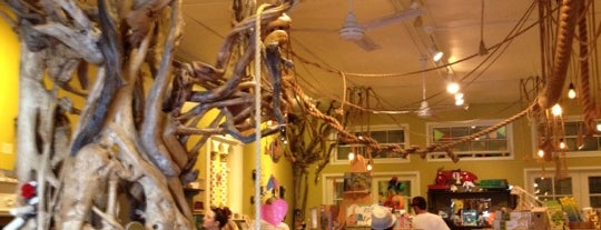 Paxton Gate's Curiosities for Kids is one of Bay Area Awesomeness.